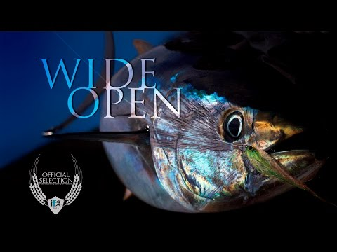 """Wide Open"" Trailer - Official Selection of the IF4™ 2016"