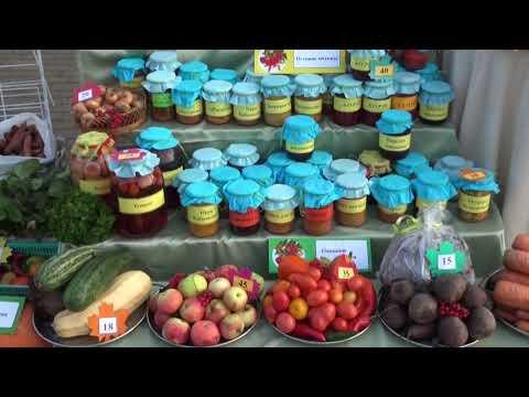 Сельскохозяйственная ярмарка - ко Дню пожилых