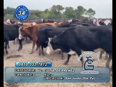 Lote vc CGP - San Justo