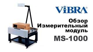 Измерители веса и габаритов ViBRA MS
