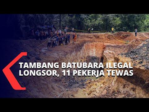 tambang batubara ilegal longsor pekerja ditemukan tewas