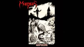 MORPHEUS (US) - 05 - Accelerated Decrepitude