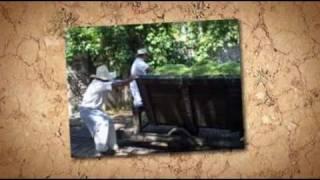 preview picture of video 'Sotuta de Peon - Merida, Mexico'