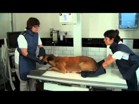 Osteocondrosi della terapia manuale trattamento cervicale