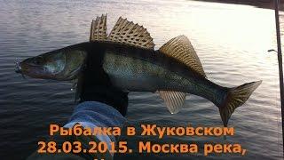 Рыбалка на ждановке р москва