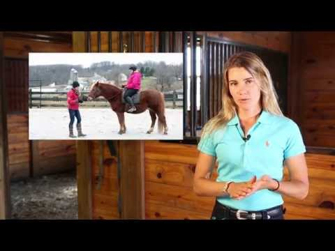 Free Video Course: Better Riding in 7 Days - YouTube