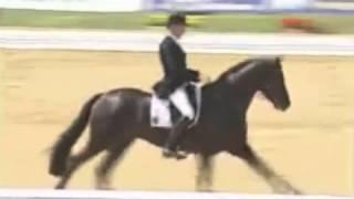 video of Fürst Heinrich