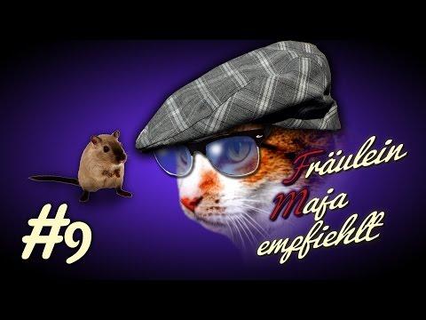 Katzen-Der beste und ultimative Beobachtungsplatz! Kratzbaum? Katzenregal? Fensterbrettauflage? #009