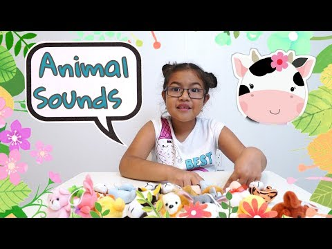 Teaches Animal Sounds | Old MacDonald for Children (17 Amazing Animals)
