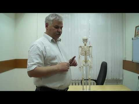 Боль в грудной клетке с правой стороны