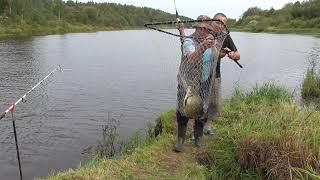 Ролики о рыбалке на реке луга