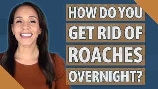 How do you get rid of roaches overnight?
