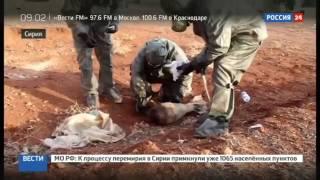 Сирия ИГИЛ применили химическое оружие