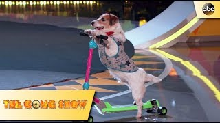 : Just Jesse The Jack - The Gong Show