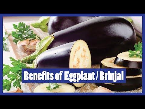 , title : 'Uses of Bringal | Eggplant | Aubergine | Solanum melongena | 2016 | Urdu / Hindi