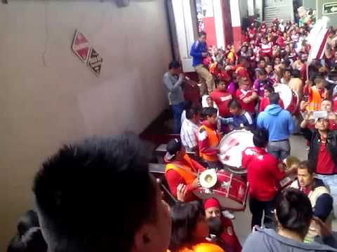 """Perra brava"" Barra: La Perra Brava • Club: Toluca"