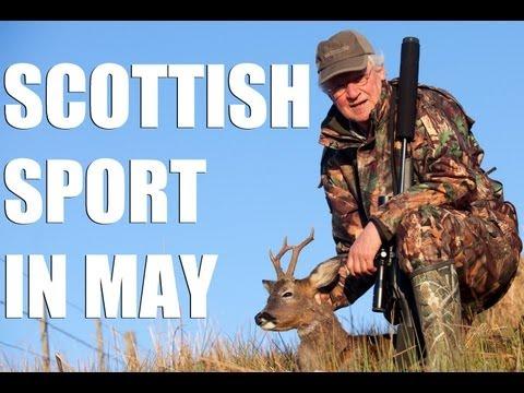 Fieldsports Britain – Scottish deer, pigeons and English foxshooting