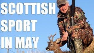 Fieldsports Britain – Scottish deer, pigeons and English foxshooting (episode 127)