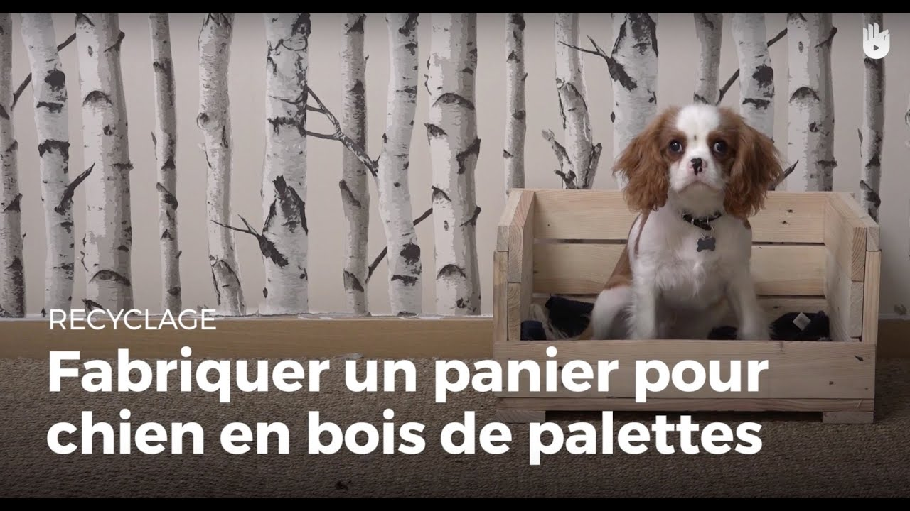fabriquer un panier chien en bois de palette fabriquer des meubles avec des palettes sikana. Black Bedroom Furniture Sets. Home Design Ideas
