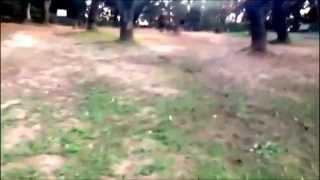 里見公園のイメージ