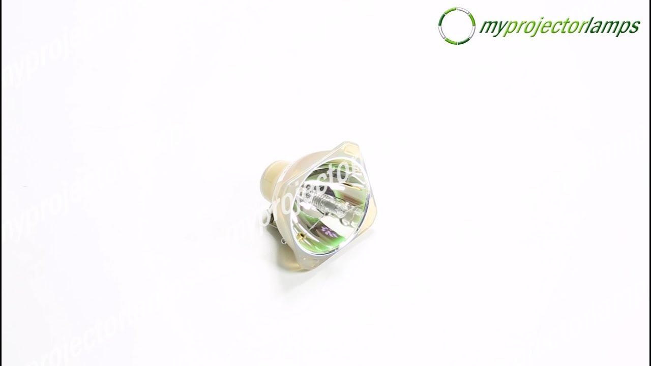 NEC 50029556 Bare Projector Lamp-MyProjectorLamps.com