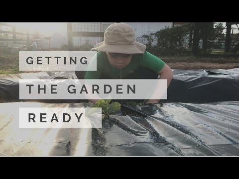 Getting The Garden Ready For Spring Vlog