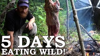 5 DAYS eating ONLY WILD FOODS!   Survival Challenge   The Wilderness Living Challenge 2017 SEASON 2
