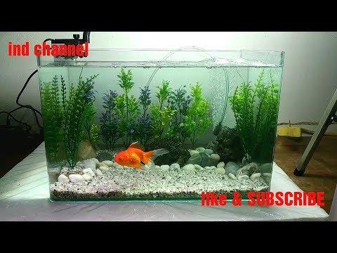 mp4 Design Aquarium Mini, download Design Aquarium Mini video klip Design Aquarium Mini
