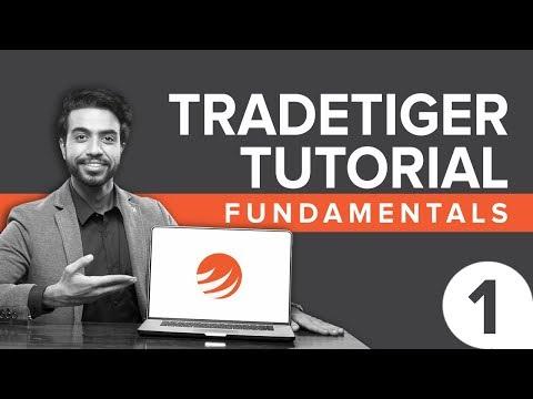TradeTiger Tutorial: Fundamentals