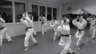 preview picture of video 'Yoshinkan Aikido - Shobukan Dojo Gliwice 養神館 合気道'