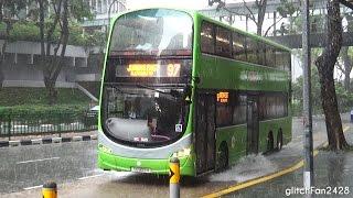 Suntec Convention Centre - Buses in Heavy Rain - 2016