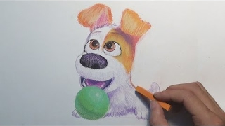 The Secret Life Of Pets Drawing - Puppy Max