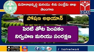 T-SAT || WD &CW || పోషణ అభియాన్ : పెరటి తోట పెంపకం - నిర్వహణ మరియు సంరక్షణ