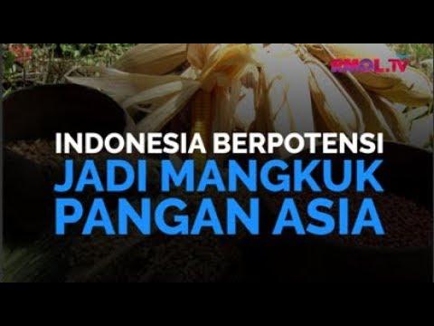 Indonesia Berpotensi Jadi Mangkuk Pangan Asia