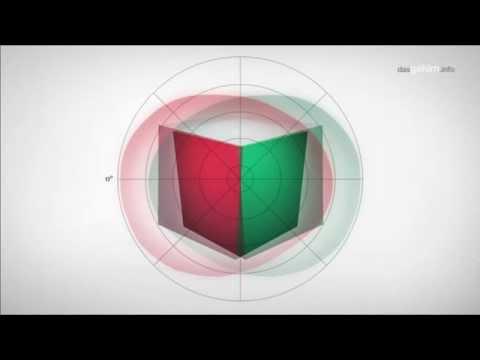 Tiefenwahrnehmung und räumliches Sehen I Wahrnehmung