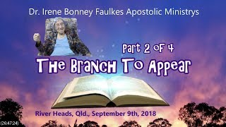 (Part 2 of 4) The Branch To Appear