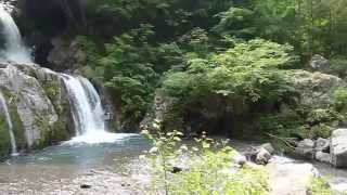 群馬県上野村龍神の滝
