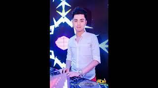 999 Đóa Hồng Việt Puzo   DJ Thái Hoàng Mix