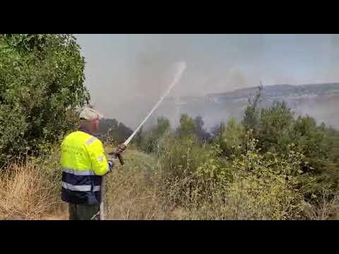 שריפה סמוך לשורש: כביש 1 נחסם