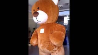 """Надувной костюм (пневмокостюм) """"Мишка Тэдди"""" от компании SHOWplus - видео"""