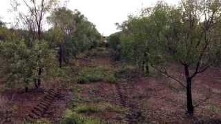Best Sri Gandham site SV gardens khammam