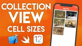 Collection View Part 2 in Swift 4.2