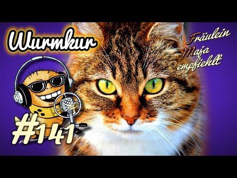 Wurmkur-Wurmbefall und Entwurmen der Katze-Fräulein Maja empfiehlt Teil 141