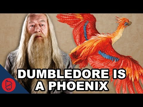 Dumbledore Is A Phoenix | Harry Potter Theory