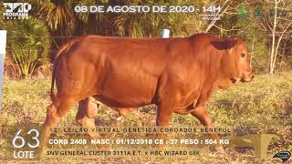 Coro 2408 b4 fiv