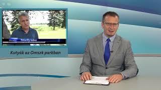 TV Budakalász / Budakalász Ma / 2020.07.16.