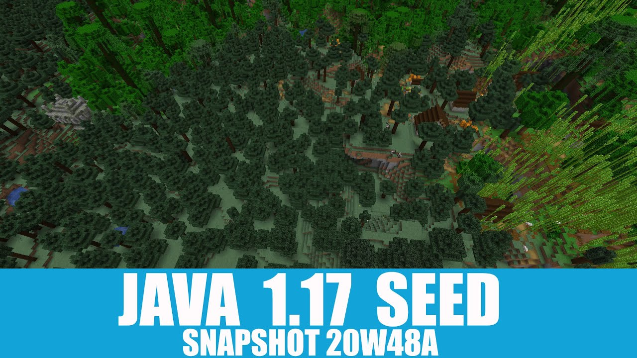 Minecraft Java 1.17 Seed: Spawn between bamboo jungle village and taiga pyramid + many diamonds MINECRAFT SEED 1207626396690153964