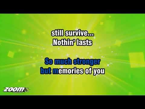 Amelia Lily - Party Over - Karaoke Version from Zoom Karaoke