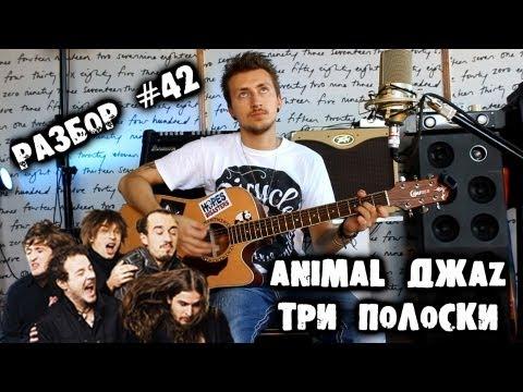 show MONICA Разбор #42 - Animal ДжаZ - Три полоски (Как играть, урок)