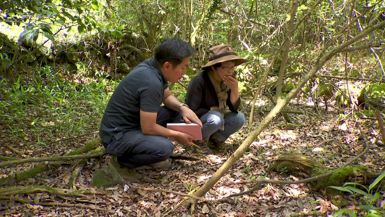 제주MBC 창사 51주년 특집 다큐멘터리 '물과 숲 그리고 흙의 이야기'